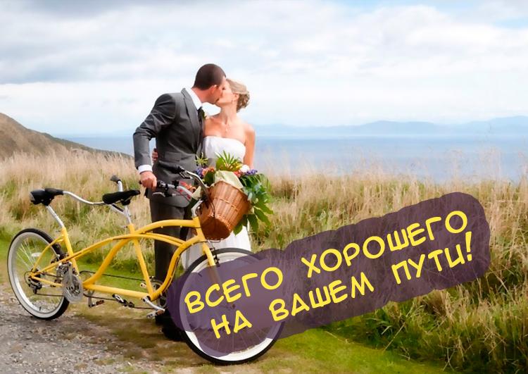 Поздравление со свадьбой молодоженам оригинальные картинки прикольные, маша надписями картинки